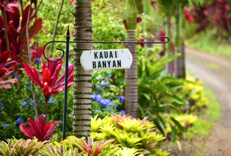 Kauai Banyan Inn