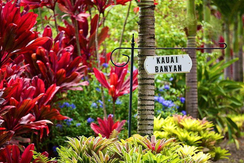 Kauai Banyan Inn, Lawai